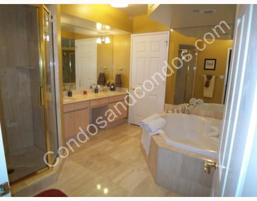 Spa tub and separate glass enclosed shower in master bathroom