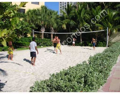 Bayside volleyball courts